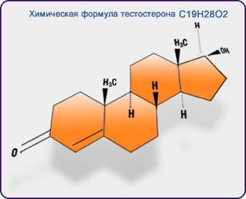 препараты тестостероном для похудения